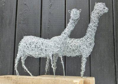 Two Alpacas, galvanised wire