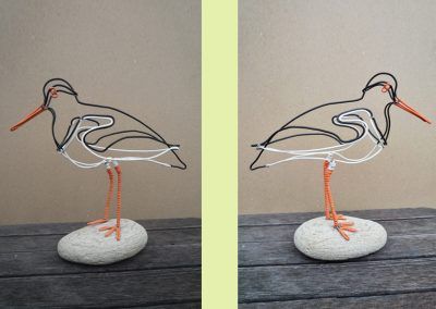 Oyster Catcher (sold)