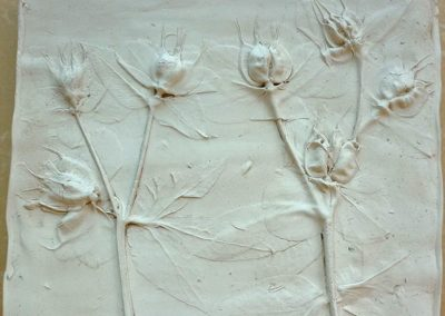 Hellebores, plaster cast from life (sold)